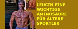 LEUCIN EINE WICHTIGE AMINOSÄURE FÜR ÄLTERE SPORTLER